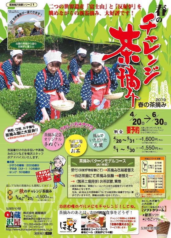 春の茶摘み衣装で茶摘体験