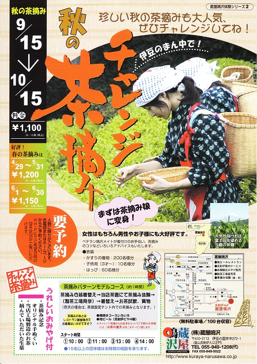 秋のチャレンジ茶摘体験